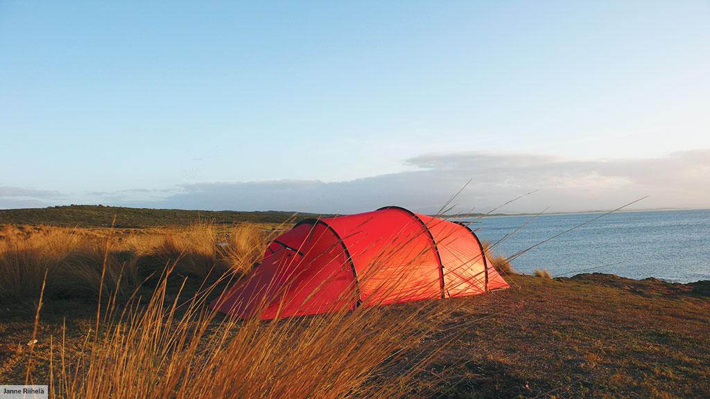 A Kaitum behind tall grass on an Australia beach. & Kaitum 3 u2022 3 person tent u2022 Hilleberg
