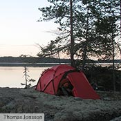 A red Tarra in a Swedish forrest.
